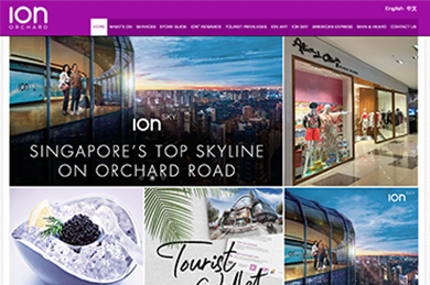 ION Orchard - Web Development